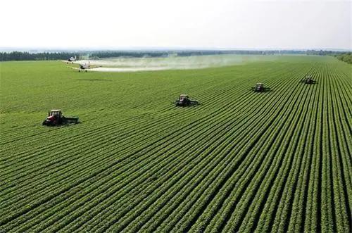 外国人如何搞定俄罗斯农业用地的所有权